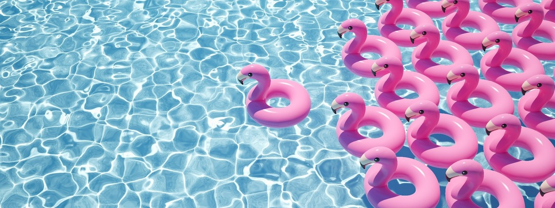 A pool of clear, blue water, with over 10 flamingo floats floating on top.